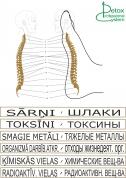 схема. позвоночник, тело на стопе